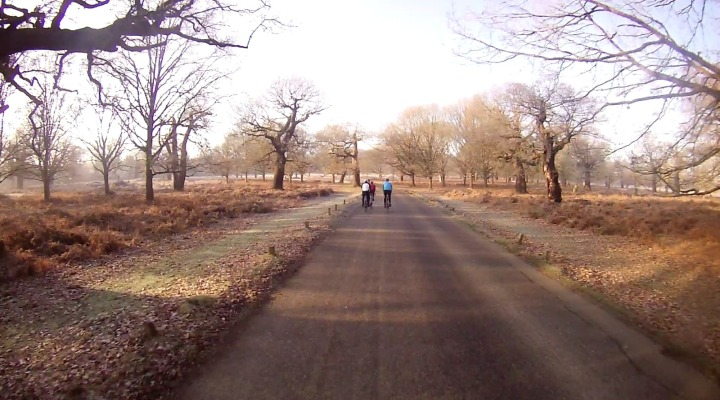 distancepark